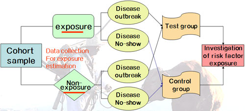nested case control study relative risk